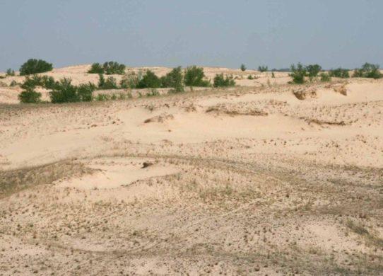 Фото песков