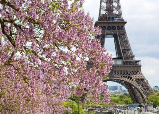 Фото Парижа в марте