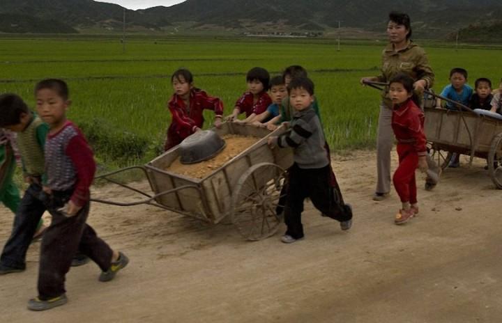 Дети Северной Кореи